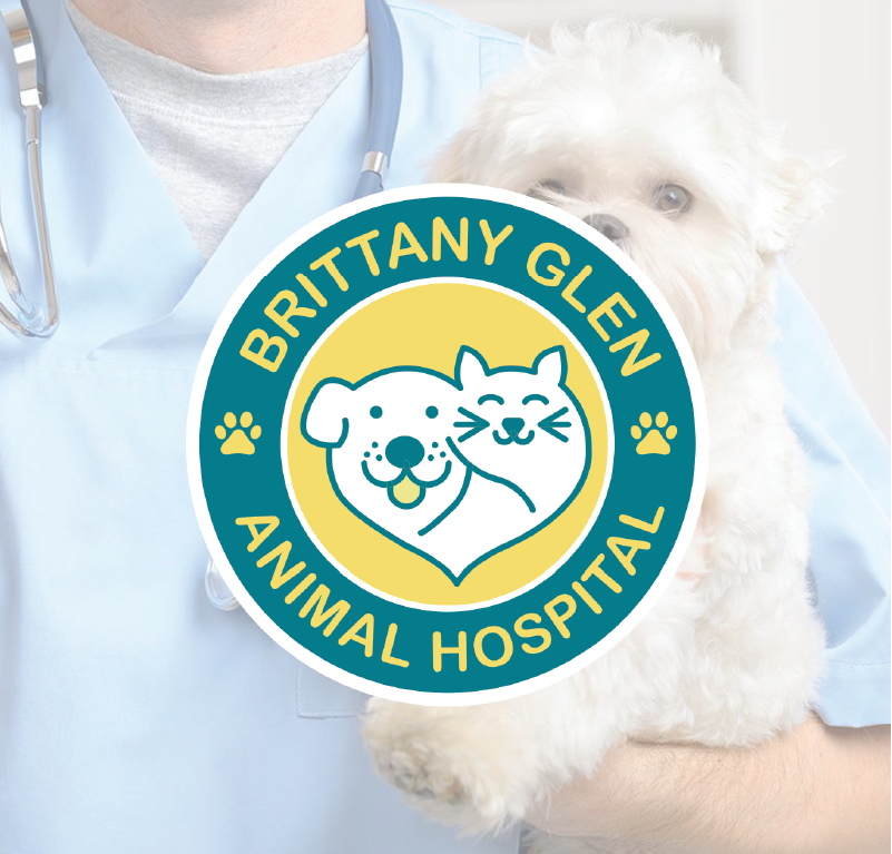Brittany Animal Hospital